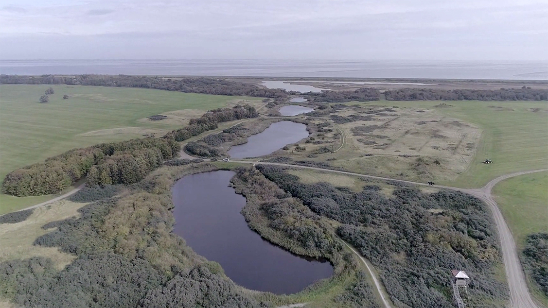 Afbeelding van Vroege Vogels TV   15 november 2019   Lauwersmeer