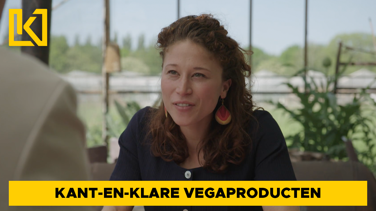 Afbeelding van Kant-en-klare vegaproducten niet altijd gezond en hoe kun je zelf lekkere vleesvervangers maken?