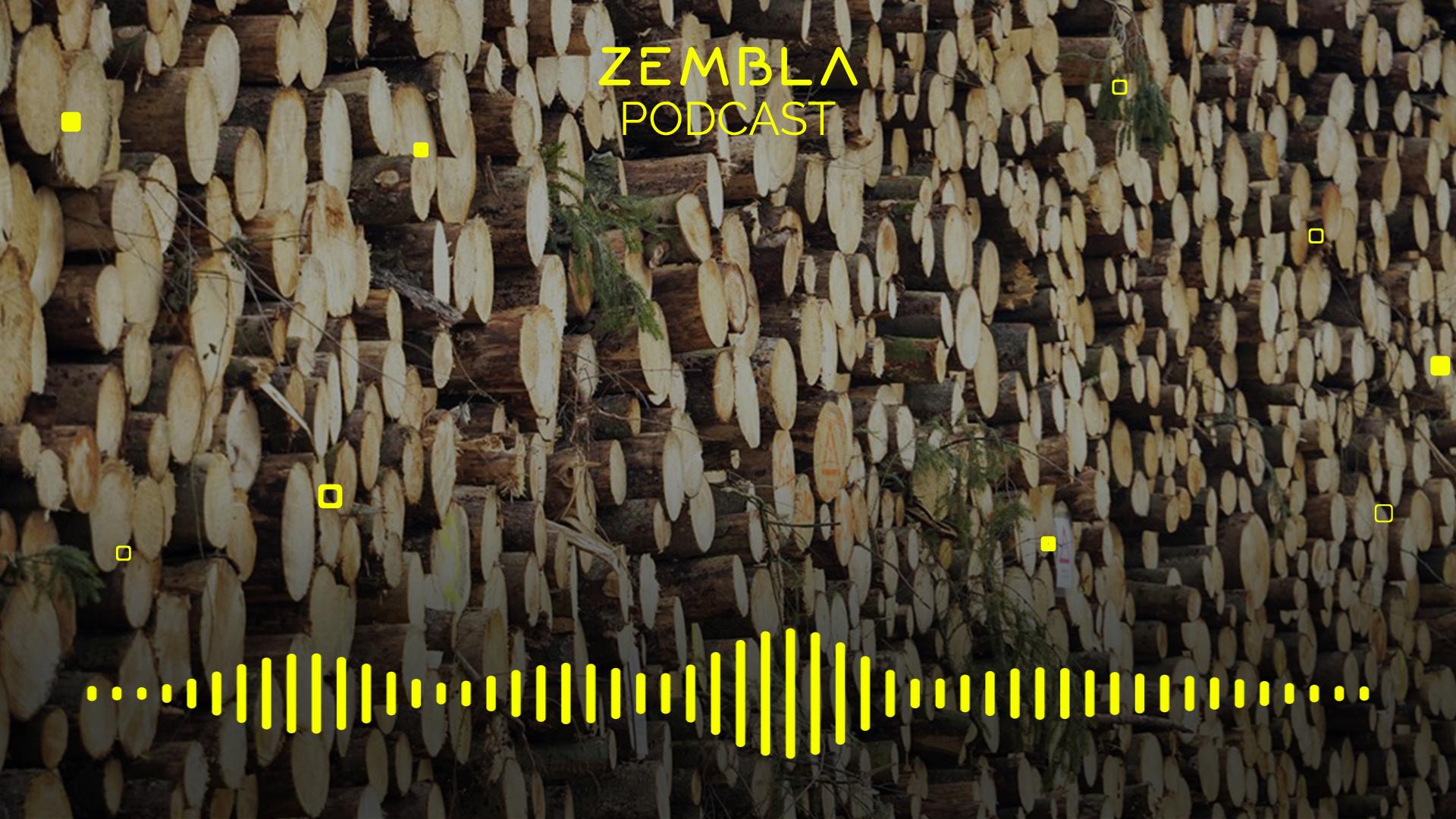 Afbeelding van Podcast: Het beloofde bos